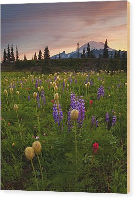 Red Sky Meadow Wood Print by Mike  Dawson