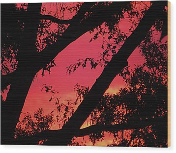 Wood Print featuring the photograph Red Sky by Susan Carella