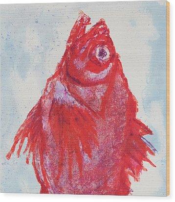 Red Snapper,head  Wood Print