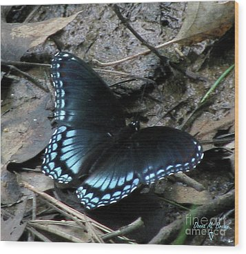 Wood Print featuring the photograph Red Spotted Purple Swallowtail Butterfly by Donna Brown