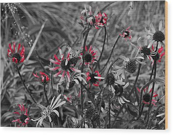 Wood Print featuring the photograph Red Streaks by Deborah  Crew-Johnson