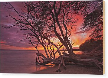 Red Sunset Wood Print by James Roemmling