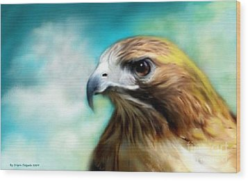 Red Tail Hawk  Wood Print by Crispin  Delgado