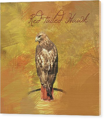 Wood Print featuring the photograph Red-tailed Hawk Watercolor Photo by Heidi Hermes