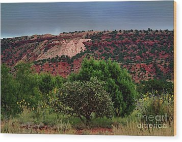 Wood Print featuring the photograph Red Terrain - New Mexico by Diana Mary Sharpton