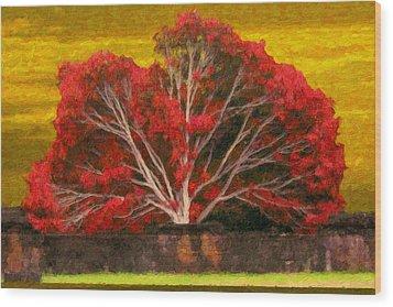 Red Thai Tree Wood Print by Rob Tullis
