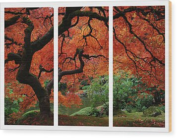 Red Tree Wood Print by James Roemmling
