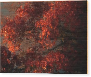 Red Tree Scene Wood Print by Mikki Cucuzzo