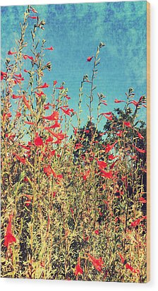 Red Trumpets Playing Wood Print