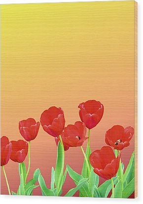 Red Tulips Wood Print by Kristin Elmquist