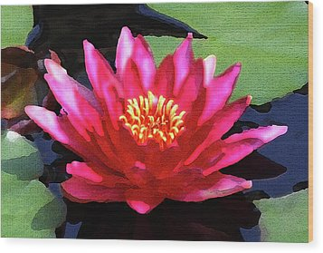 Red Water Lily - Palette Knife Wood Print