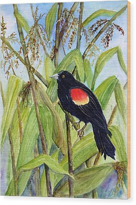 Red-winged Sentry Wood Print