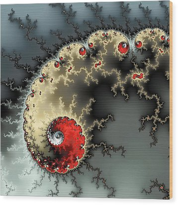 Red Yellow Grey And Black - Amazing Mandelbrot Fractal Wood Print