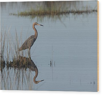 Reddish Egret And Reflection In The Morning Light Wood Print