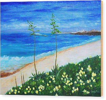 Redondo Beach Wood Print by Jamie Frier