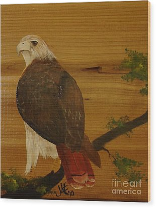 Redtail Wood Print by Jena Gillam