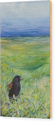 Redwing Blackbird Wood Print by Michele Hollister - for Nancy Asbell