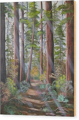 Redwood Path Wood Print