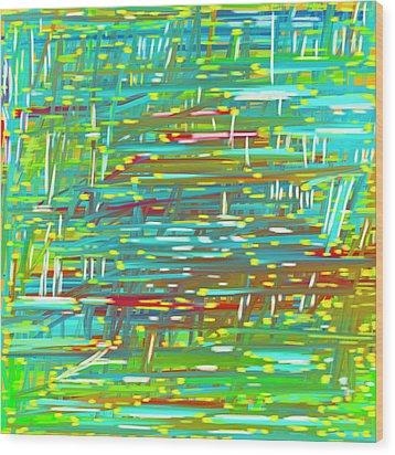 Reedy Pond Wood Print by Frank Tschakert