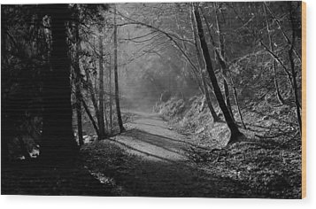 Reelig Forest Walk Wood Print