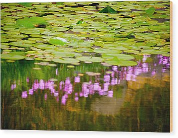 Reflected Flowers And Lilies Wood Print by Paul Kloschinsky
