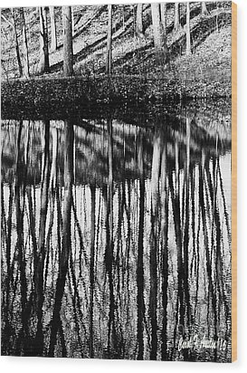 Reflected Landscape Patterns Wood Print by Carol F Austin