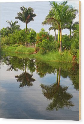Reflected Palms Wood Print by Rosalie Scanlon