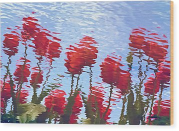 Wood Print featuring the photograph Reflected Tulips by Tom Vaughan