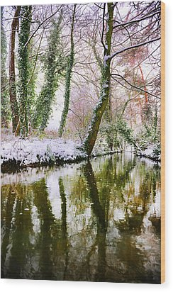 Wood Print featuring the photograph Reflected Winter by Gouzel -