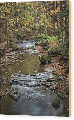 Wood Print featuring the photograph Reflecting Autumn by Dale Kincaid