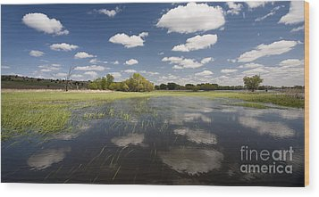 Reflecting Clouds - Jim River Valley Wood Print by Patrick Ziegler