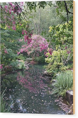 Reflecting Crape-myrtles Wood Print by Linda Geiger