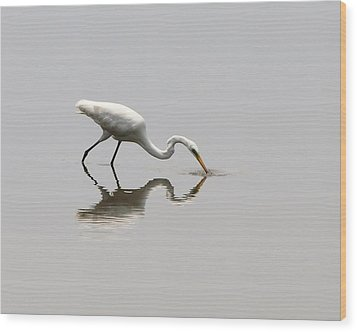 Reflecting Egret Wood Print by Al Powell Photography USA
