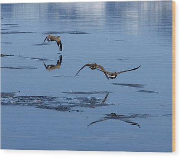 Wood Print featuring the photograph Reflecting Geese by DeeLon Merritt