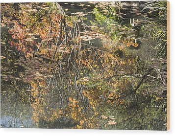 Wood Print featuring the photograph Reflecting Gold by Linda Geiger