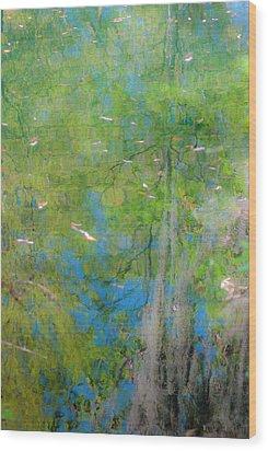 Reflecting On Abundant Humidity Wood Print by Sean Holmquist
