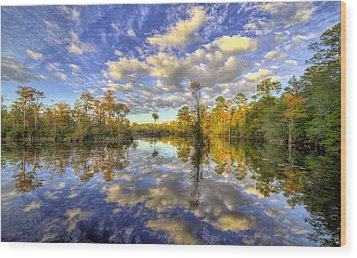 Wood Print featuring the photograph Reflecting On Florida Wetlands by JC Findley