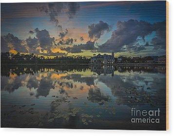 Reflection 7 Wood Print by Mina Isaac