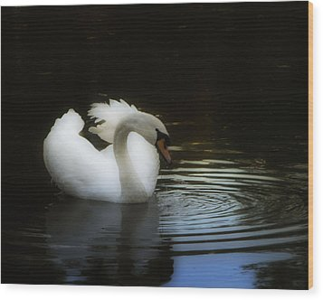 Reflection Wood Print by Deb Cohen