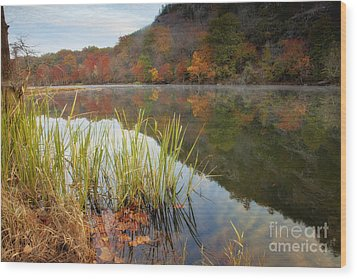 Reflection In The Fort River Wood Print by Iris Greenwell