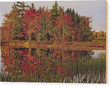 Wood Print featuring the photograph Reflection Island by Kathleen Sartoris