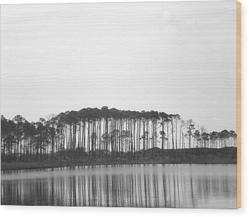 Reflection Wood Print by Laura Burchfield