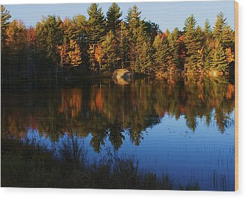 Reflection Wood Print by Lois Lepisto