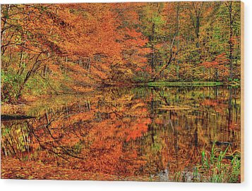Reflection Of Autumn Wood Print