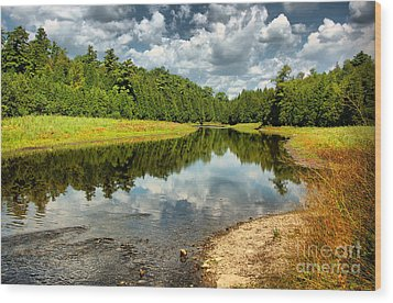 Reflection Of Nature Wood Print by Joe  Ng