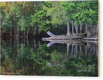 Reflection Off The Withlacoochee River Wood Print by Barbara Bowen