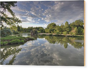 Reflection On The Poudre River Wood Print by Shane Linke