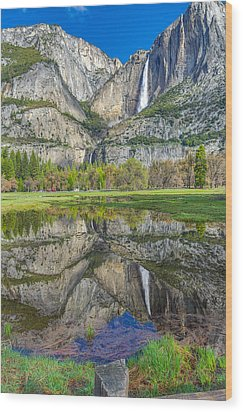 Wood Print featuring the photograph Reflection  by Scott McGuire