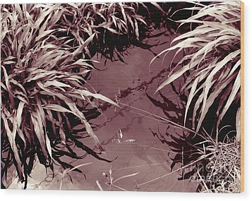 Wood Print featuring the photograph Reflections 2 by Mukta Gupta