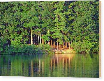 Reflections At Farrington Lake 6 Wood Print